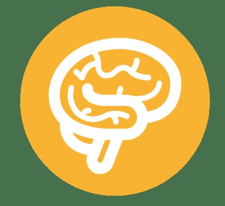Meningokokken Meningitis