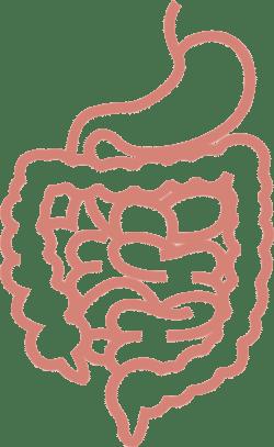 salmonellenvergiftung verlauf