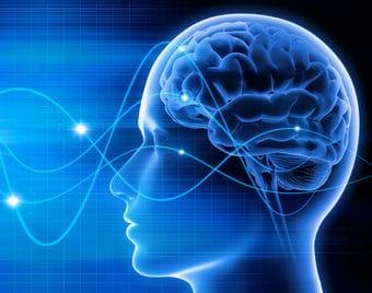 Gehirn - Schwingungen 2